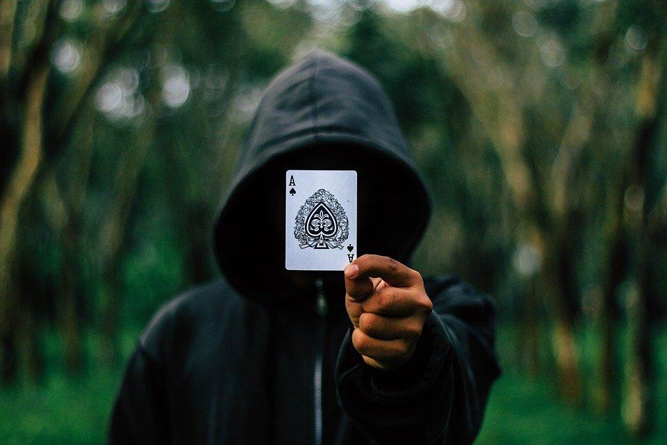 Ace, Cartes, Phoque À Capuchon, Hood, L'Homme, Adulte