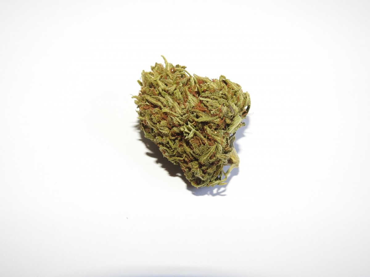 cannabis, chanvre, cannabis, bourgeon, fleur, marijuana, Ganja, CBD marijuana, Marijuana médicale, nug, plante