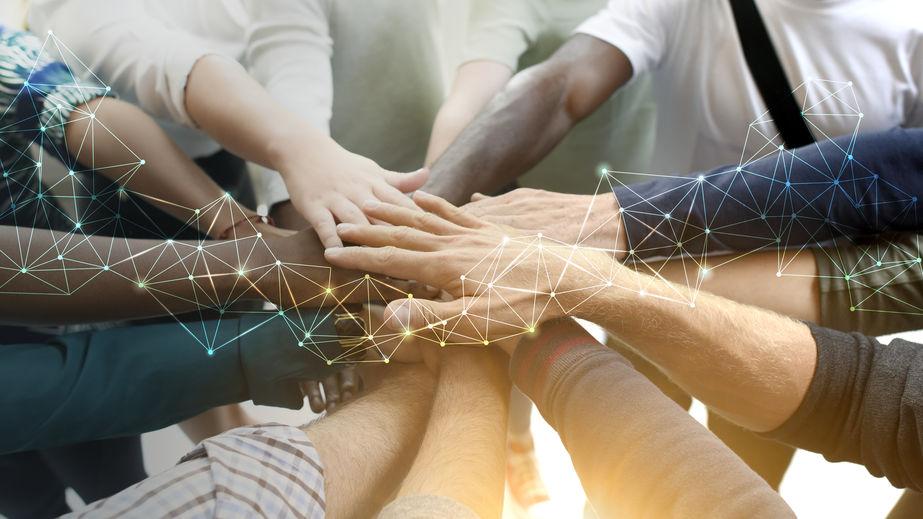organisation de team building
